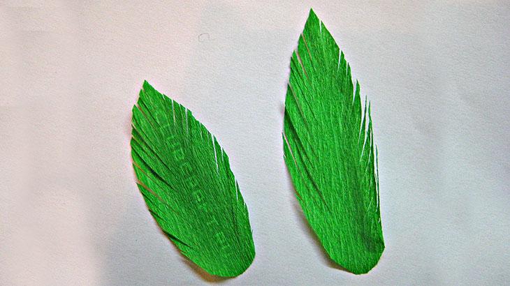 Надрезанные края листьев