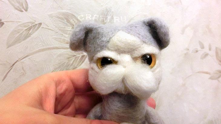 Щечки котёнка
