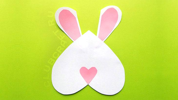 Носик зайца